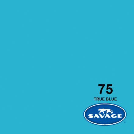 SAVAGE 75-1253 WIDETONE SEAMLESS BACKGROUND PAPER TRUE BLUE (A2 1.35M X 11M)