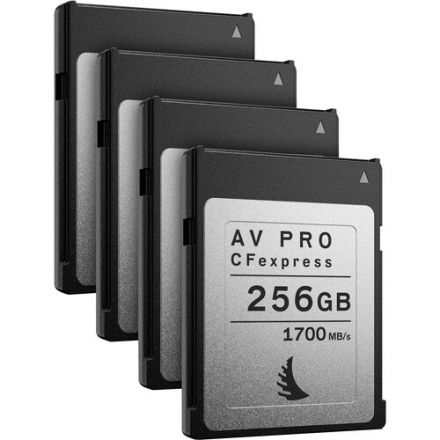 ANGELBIRD AV PRO CFEXPRESS 256GB MEMORY CARD