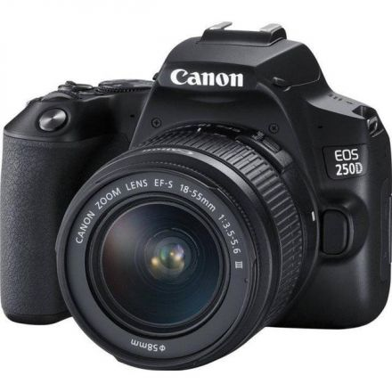 CANON EOS 250D WITH BENRO GAMMA II 20 + SANDISK SDHC 32GB AND BENRO T660EX TRIPOD BUNDLE OFFER
